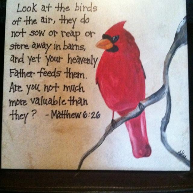 12 Best Cardinals Images By Angela Barrett On Pinterest Cardinals