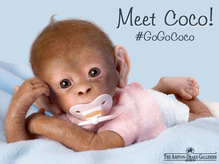 1000 Images About Monkey See Monkey Do On Pinterest She