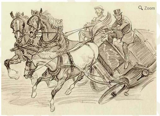 Illustration from Paul Brown Black Beauty