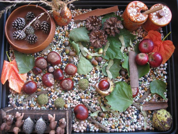 Autumn Sensory Play Fall Pinterest Nature Trays And
