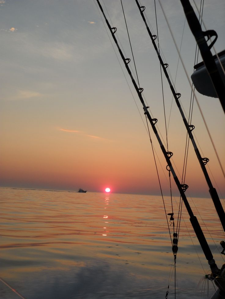 23 best images about things i love on pinterest for Deep sea fishing maryland