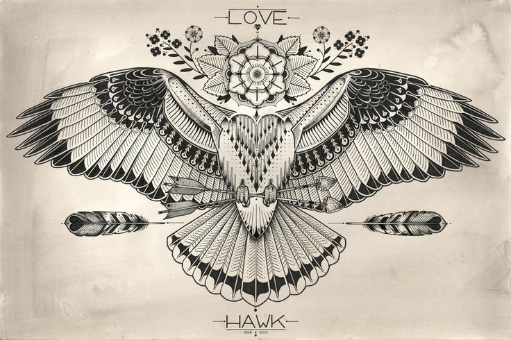 David Hale - Love Hawk Studios