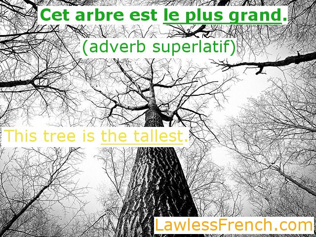 French superlative adverbs