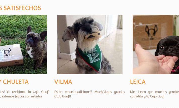 17 best negocios para perros images on pinterest dogs stop it and ecommerce in latin america club guafs satisfied clients solutioingenieria Choice Image