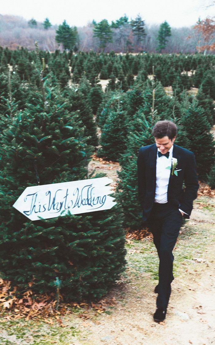 This Christmas Tree Farm Wedding Looks Like A Fairytale Come True | Bored Panda | www.mysweetengagement.com