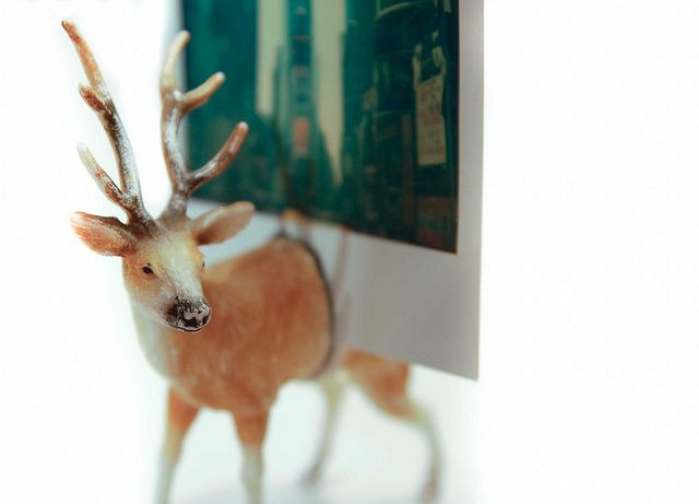 Deer Photo Holder by Stacie Stacie Stacie, via Flickr      beats paying photojojo $ 7 for one