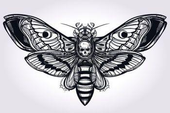 tatouage tete de mort: Décès tête sphinx main silhouette dessinée. Design Art de tatouage. Elégant isolé illustration vectorielle. Trendy élément Vintage. Sombre romance, la philosophie, la spiritualité, l'occultisme, l'alchimie, la mort, la magie.
