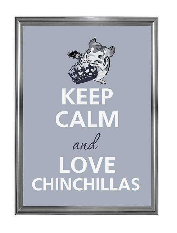 Keep calm and love chinchillas on Etsy, $12.00