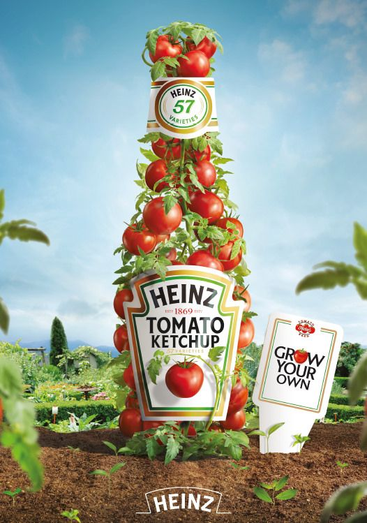Heinz 'Grow Your Own' Ketchup