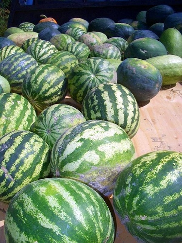 Nebraska Watermellons