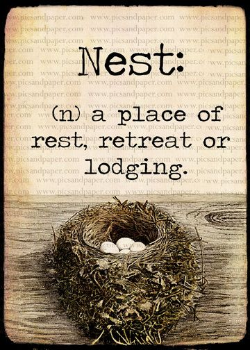 Vintage Bird's Nest with Definition | For the Home | Pinterest | Vintage birds, Definitions and ...