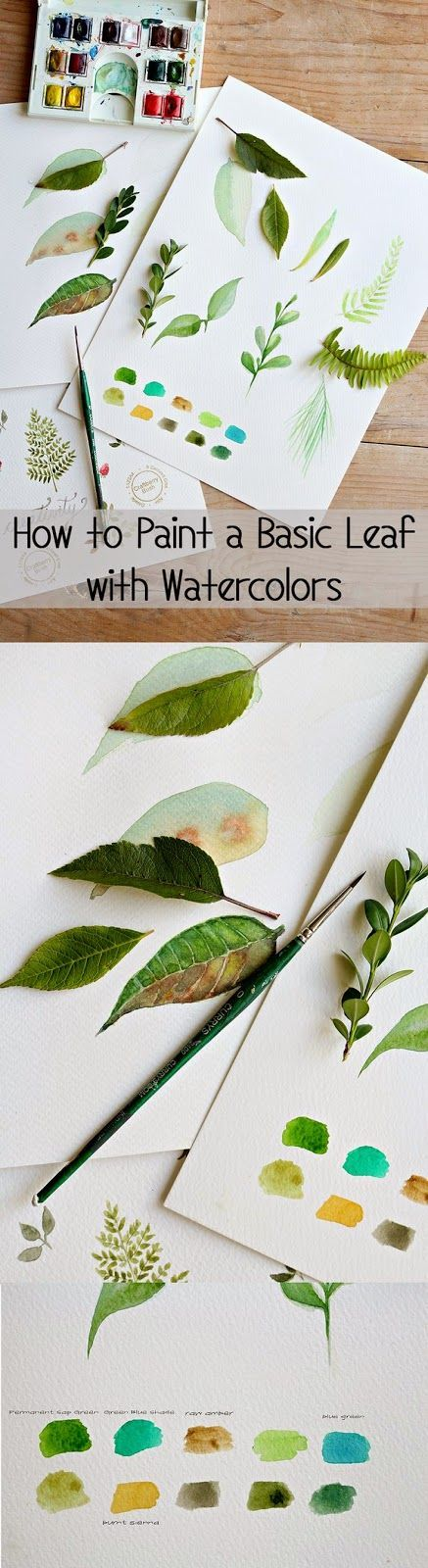 How to paint a basic leaf with watercolors - couldn't be easier! Paint like a pro with this SUPER simple tutorial.