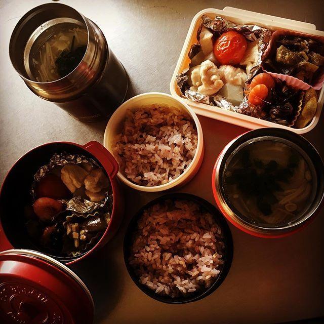 珍しくお弁当。 父と私の分です。 ・ #お弁当#お昼ごはん#ランチ#料理#肉#味噌汁#雑穀米#健康#和食#cooking#lunch#meat#chicken#tomato#rice#soup#bento#japanese#japanesefood#health#healthyfood#homemade#handmade#