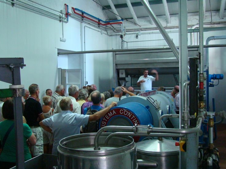 GUIDED TOURS TO THE OLIVE MILL  We offer guided tours for individuals but also for groups, every day, 2 times a day (11.00h / 17.00h)  Come to the #mill and find out the secrets of #oliveoil world! #gastrotourism #oleoturismo #olives  Olive Oil Tourism - International Department: international@oleoturismojaen.com