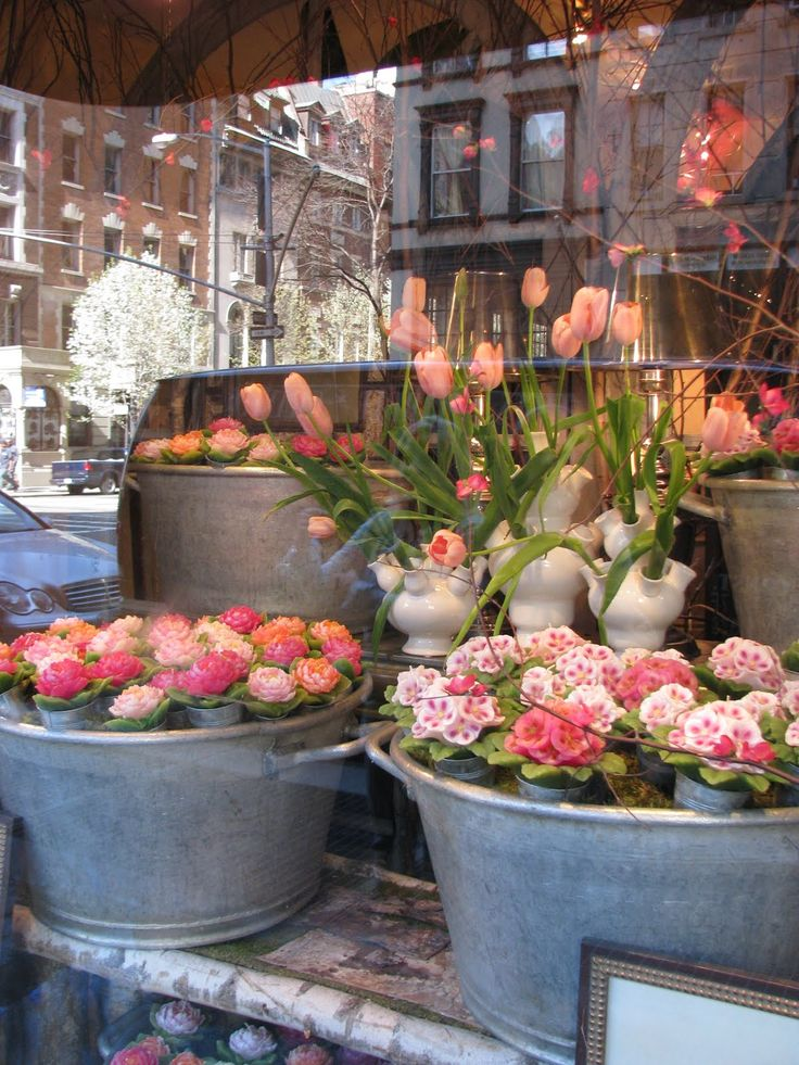 heirloom philosophy: Reflections from New York