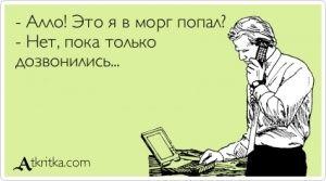 Аткрытка №352882: - Алло! Это я в морг попал? - Нет, пока только  дозвонились... - atkritka.com