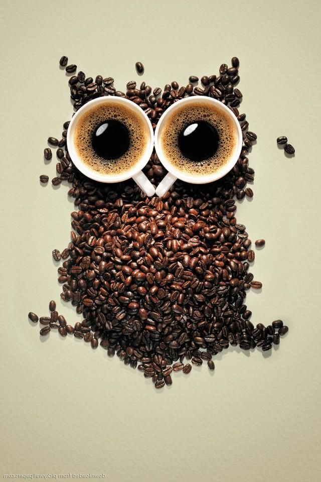 Fall Cell Phone Wallpapers Best 25 Owl Wallpaper Iphone Ideas On Pinterest Owl