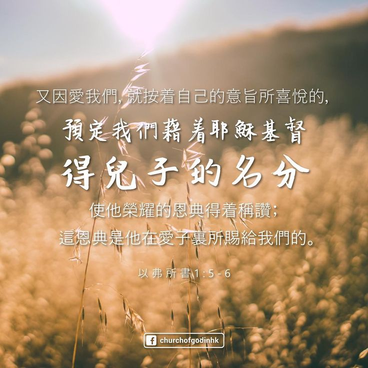 Bible Verse of the Day  Having predestinated us unto the adoption of children by Jesus Christ to himself, according to the good pleasure of his will,To the praise of the glory of his grace, wherein he hath made us accepted in the beloved.  Ephesians 1:5-6  #香港神的教會 #TheChurchofGodinHK #truthsetsfree #wordsfromabove #bible #verse #heavenlyfather