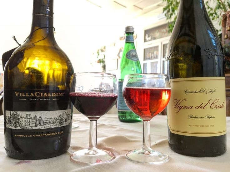 Lambrusco wine! There are a few different types, all from central Italy (Emilia- Romagna) in the mountains! Discover what pairs best with a Lambrusco at versavino.com