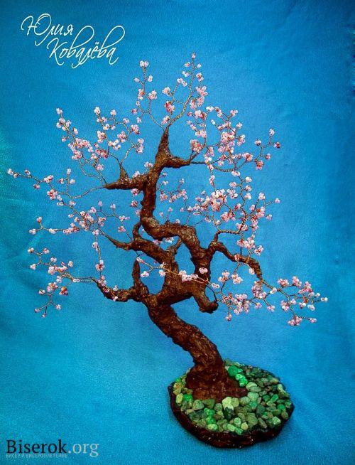 die besten 25 bonsai kirschbaum ideen auf pinterest kirsch obstbaum trauerkirschbaum und. Black Bedroom Furniture Sets. Home Design Ideas