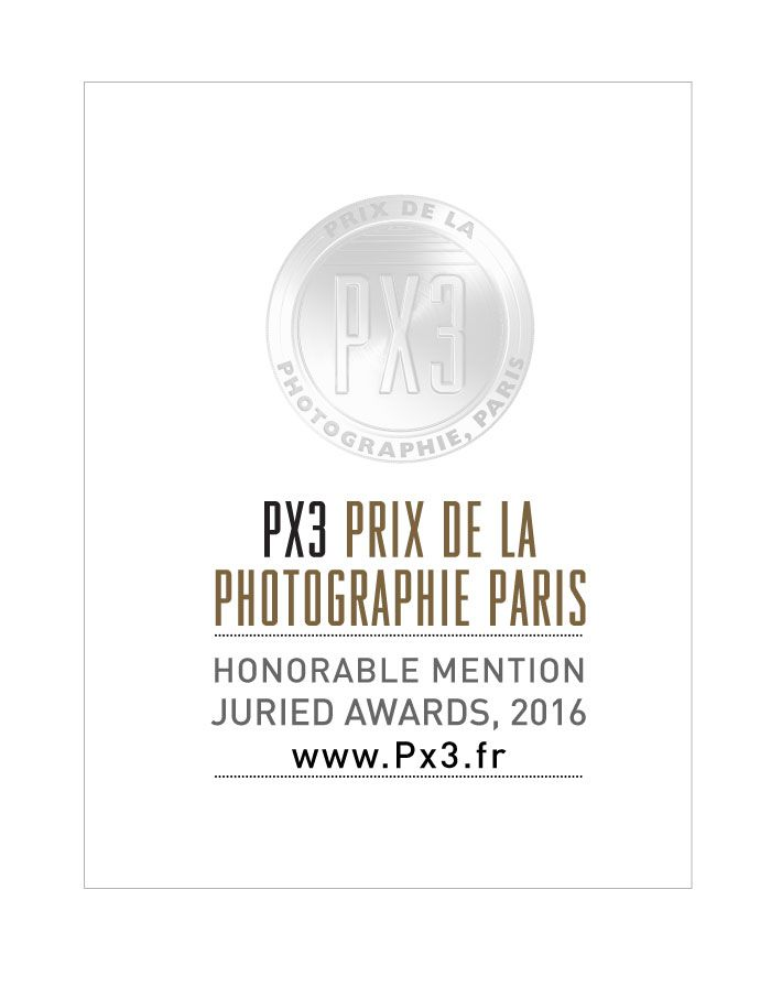 "PX3 Prix de la Photographie Paris 2016 Honorable Mention for series ""Meating with art"" ANNA TOKARSKA PHOTOGRAPHY ⓒ"