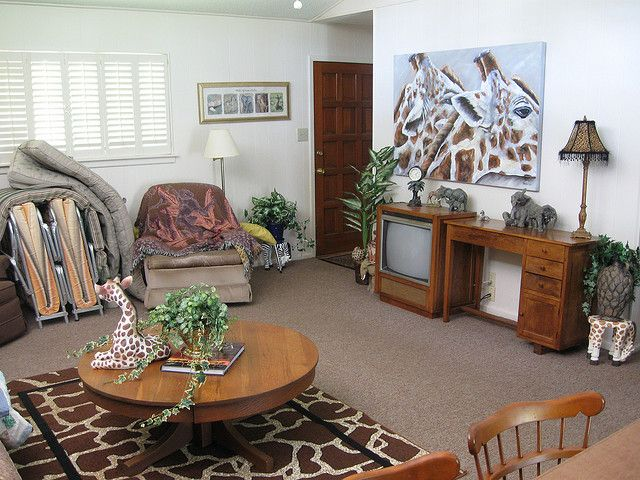 Who Says That You Cannot Redecorate Your Modern Living Hall With The Safari  Themed Living Room? These Amazing Safari Themed Living Room Ideas Will  Instead ... Part 94