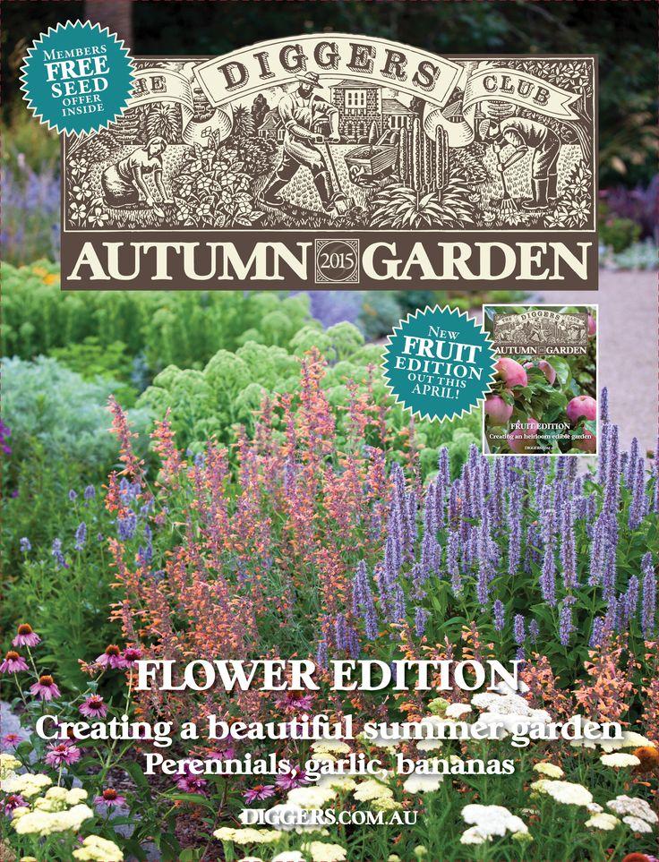 Autumn Garden Magazine   Flower Edition