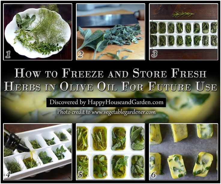 How to freeze and Store Fresh Herbs in Olive Oil For Future Use
