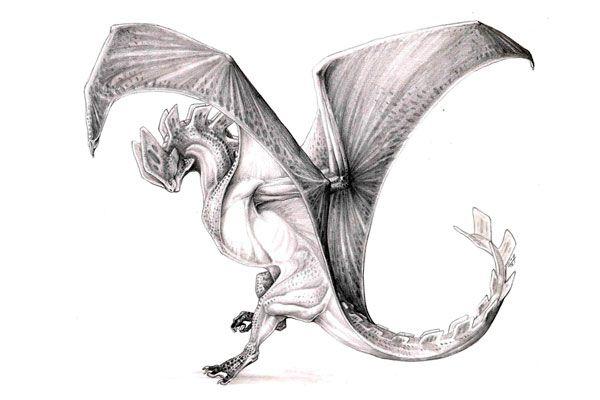 инь янь картинки с драконами