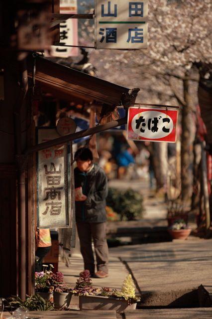 昔ながらのたばこ屋さんの看板と桜。なんか…好き!☆Japan's stereotype cigarette shop sign, in the cherry blossom season.