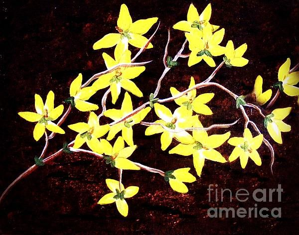 Forsythia Branches by Barbara Griffin. Yellow forsythia branches painted on a brown mottled background. This spring shrub is a bright yellow spot in a garden.
