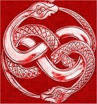Image result for celtic snake tattoo