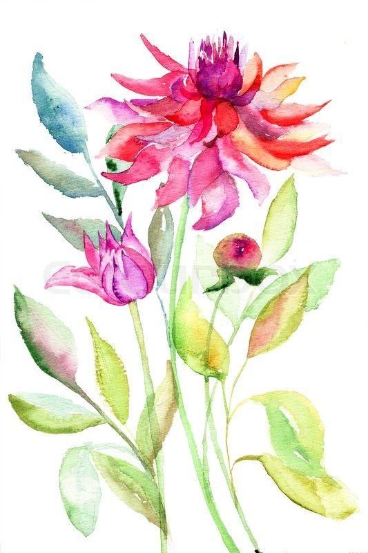 camera illustration watercolor - Cerca con Google