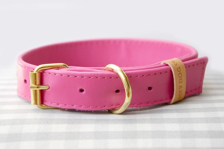 Hey Dog Pinky Dinky collar