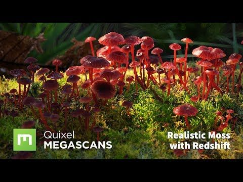 In this tutorial, Dan Woje goes over the process of using Megascans atlases with Forest Pack to create realistic moss using Redshift for rendering. - How to ...