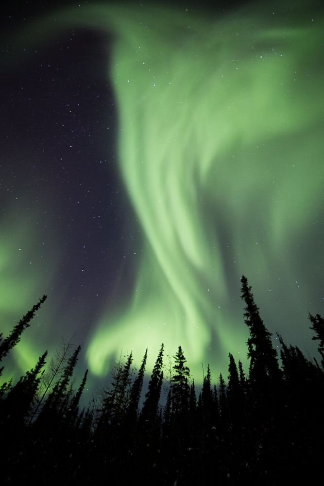 How to photograph the northern lights (might need this!)