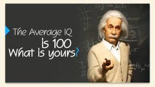 IQ Tests〉Funny Tests〉Idoit Tests Video - YouTube