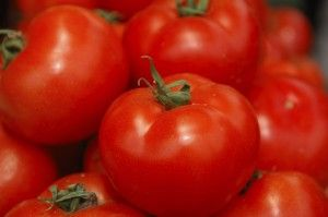 New to our #garden centers: Grafted tomatoes! What's the difference between tomatoes and grafted tomatoes? This blog gives all the details. Learn all about Stauffers of Kissel Hill Garden Centers at www.skh.com