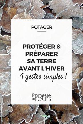 Le potager en hiver : four gestes pour protéger le sol et préparer la terre