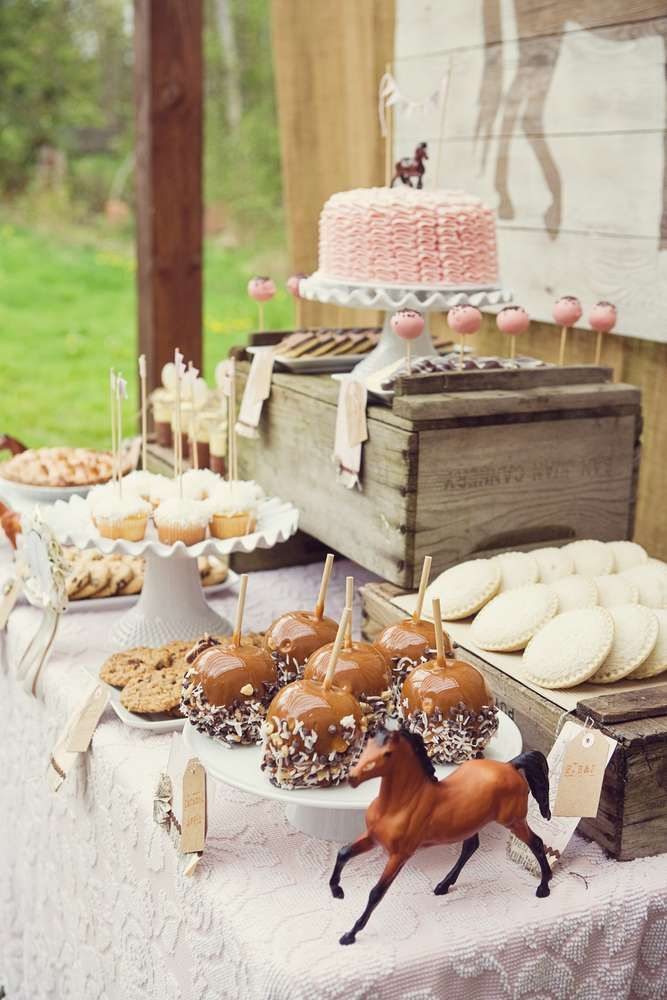 Pink Brown Vintage Ponies Birthday Party Ideas   Photo 6 of 36   Catch My Party