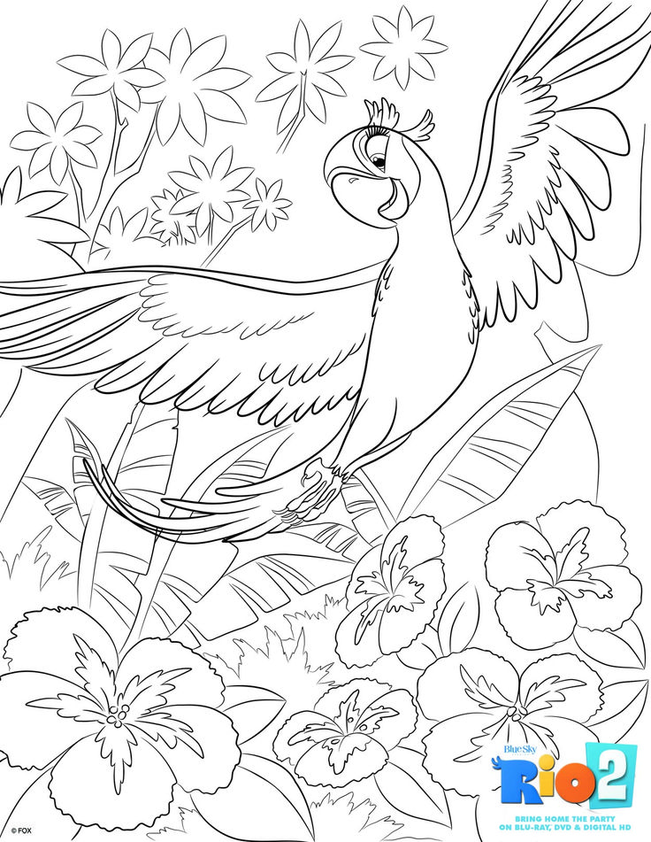 free rio 2 coloring pages