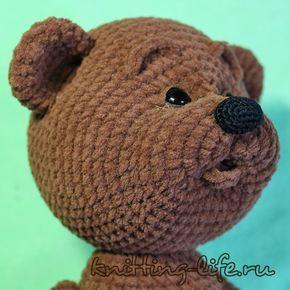 Bear|
