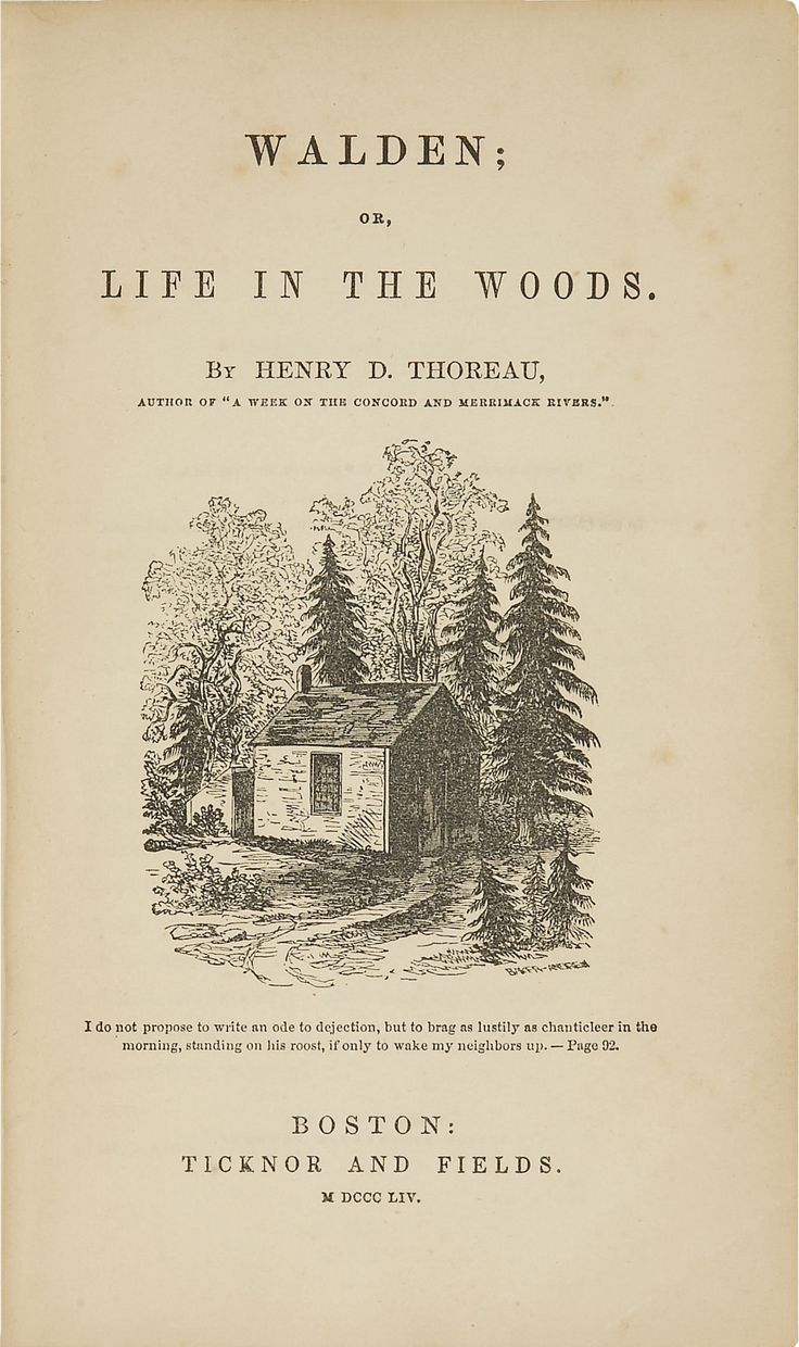 an introduction to the literature by henry david thoreau Introduction henry david thoreau introduction to thoreau, from the college  textbook publisher the heath anthology of american literature.
