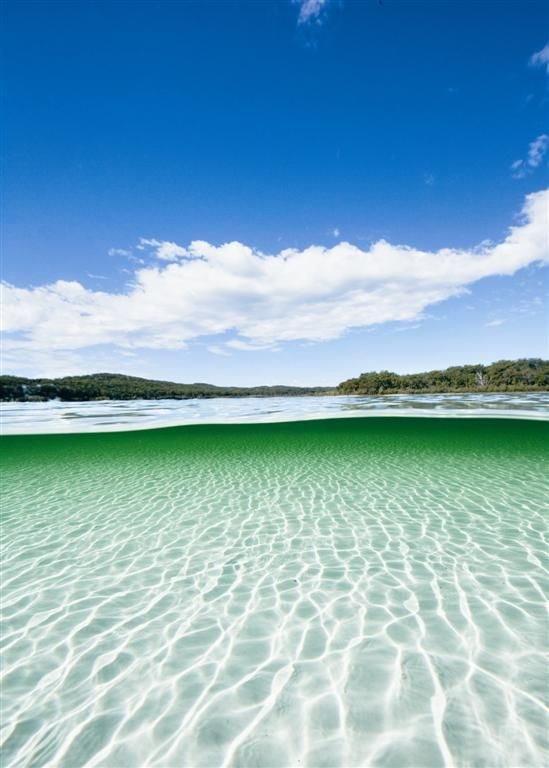 Lake McKenzie, Fraser Island, Queensland, Australia is so pure that everyone wearing lotion were asked NOT to get in the water.