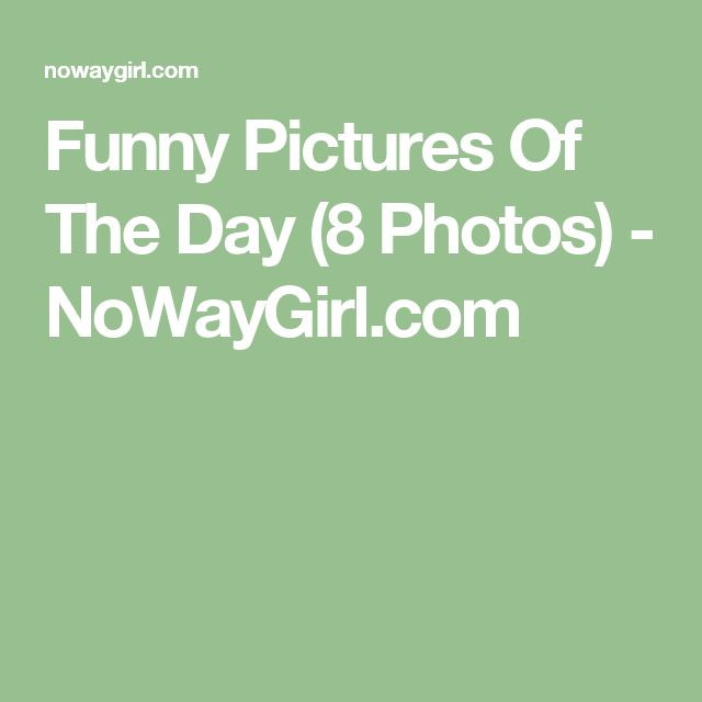 Funny Pictures Of The Day (8 Photos) - NoWayGirl.com