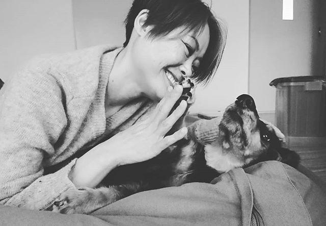 記念の500post✨ チョコとハイタッチでお祝いです✋🐾 モデル犬も慣れて撮影いつもありがとうチョコ。  そして、皆様も仲良くして頂き感謝な毎日です❤️これからもよろしくお願いいたします!  #犬 #愛犬 #ミニチュアダックスフンド #ブラッククリーム #無印良品 #ビーズクッション #へそ天 #ハイタッチ #記念 #いつもありがとう  #dog #dogstagram #loverydog #sausagedog #dogphotography #minituredachshund #justdachshunds #total_dogs #dachshundlife #dachshundlover #picsofdogmodels #k_9features #la_dog #superdog_world #pk_dogs #fever_pets #7pets_1day