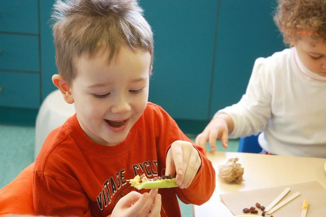 Little Chef Tommy makes Ants on a Log snack at the Ontario Early Years Centre in Bradford on Saturday, January 17, 2015. MIRIAM KING/SUNMEDIA