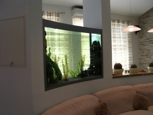 Aquarium Moderne Design #9: 4 Reasons To Incorporate Aquariums Into Your Home