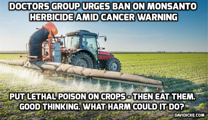 Glyphosate testing in Portugal detects highest levels ever recorded in people with no professional exposure