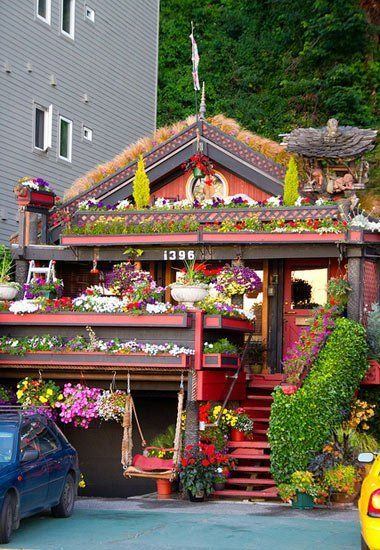 The Most Flower-ful House I've Ever Seen   — Flickr Find